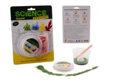 Science Explorer Create your own crystal on card